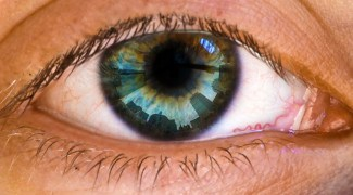 Eye and Color Blindness